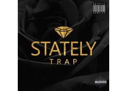 【音效】Kryptic Samples – Stately Trap WAV MIDi